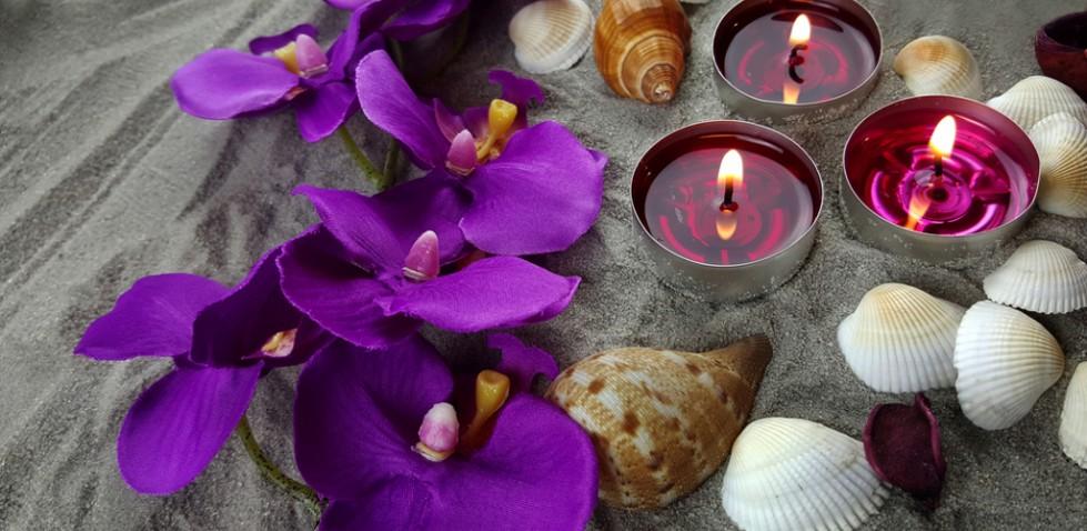 Orchids Sea Shells